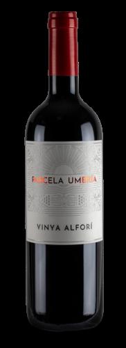 vinya alfori umbria 2018